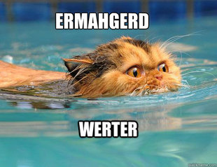 How I felt back in the pool!