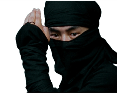 what comes up when you Google 'Ninja'